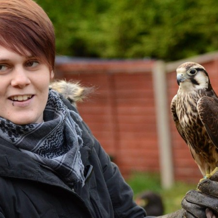 Falconry Wisbech St Mary, Cams
